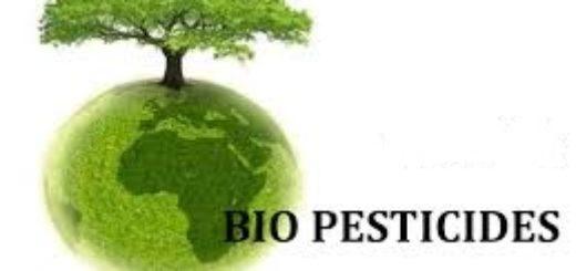 biopesticide.jpg