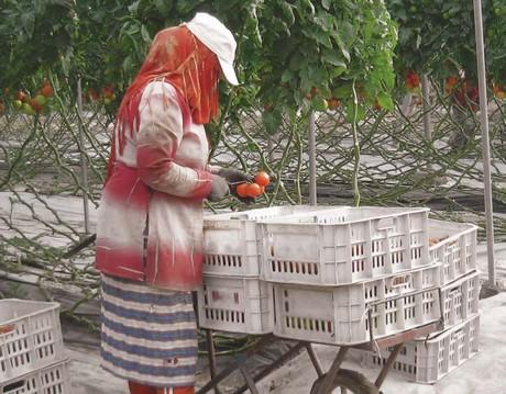 fairfood_maroc.jpg