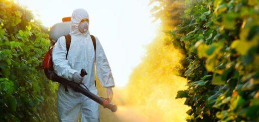 pesticides3.jpg