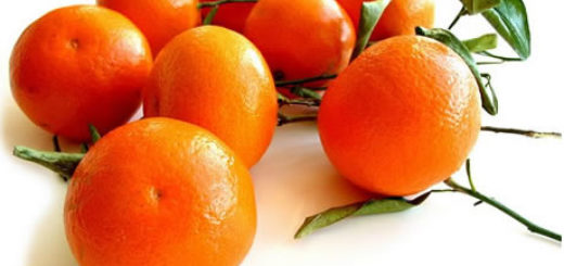 2-clementine.jpg