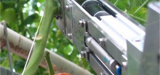 3-priva_robot_coupe_tomate.jpg