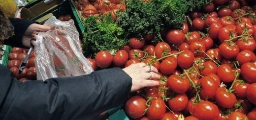 491389_une-femme-choisit-ses-legumes.jpg