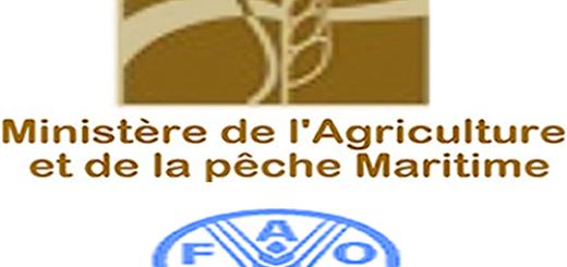 maroc_1ere_conference_internationale_sur_la_cooperation_sud-sud_du_13_au_14_decembre_a_marrakech.png