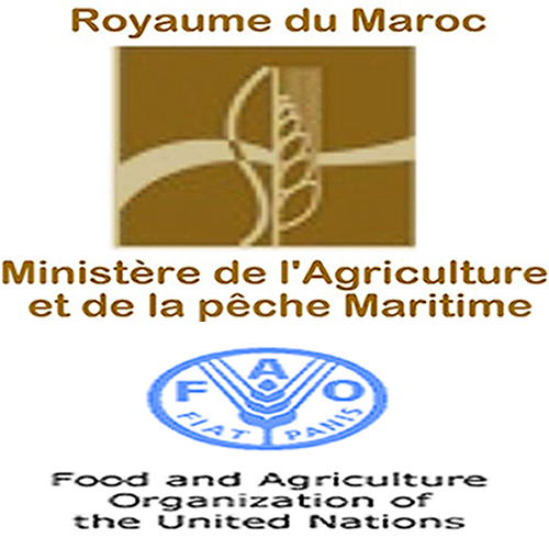 maroc_1ere_conference_internationale_sur_la_cooperation_sud-sud_du_13_au_14_decembre_a_marrakech.png