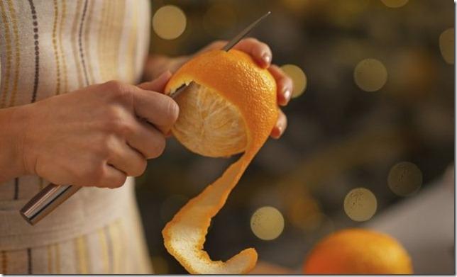 pelure citron chat
