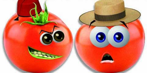 tomate-maroc.jpg