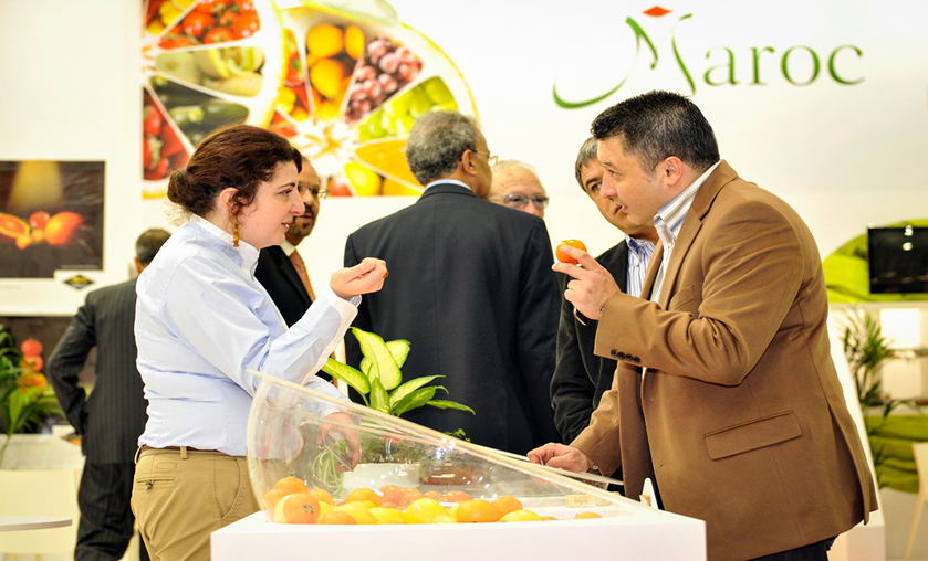 fruit-logistica-maroc-export.png