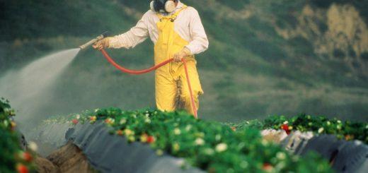 pesticide_eu.jpg