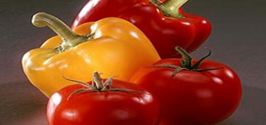 poivrons-et-tomates.png