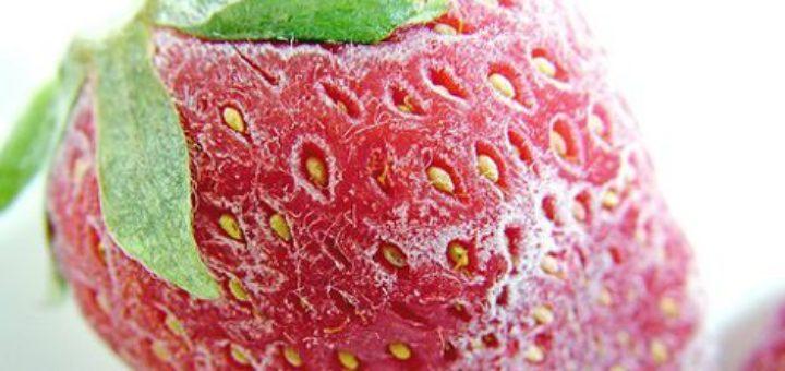 fraise_surgelee.jpg