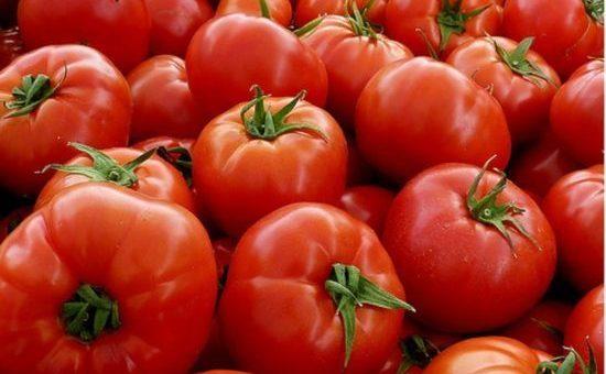 tomate.jpg