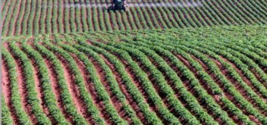 investissement_agricole.jpg