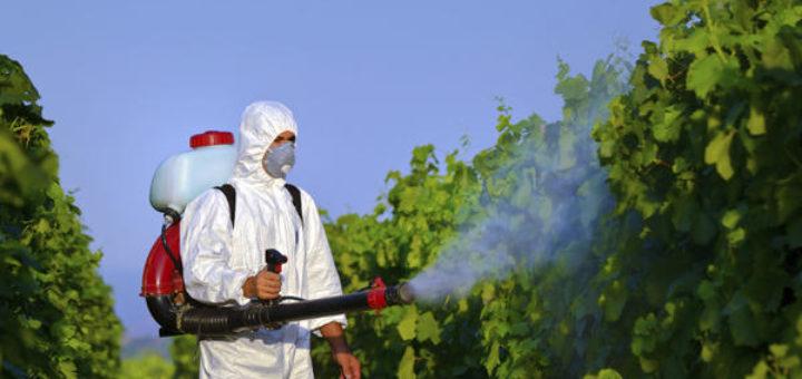 utilisation_des_pesticides.jpg