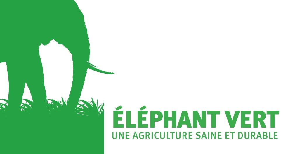 elephant_vert.jpg