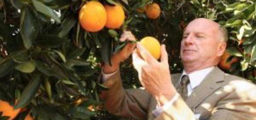 br_citrus.jpg