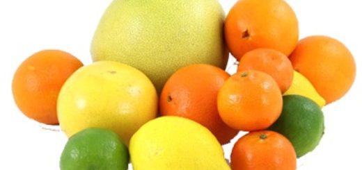 citrus10.08.jpg