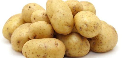 potatoesalge.jpg