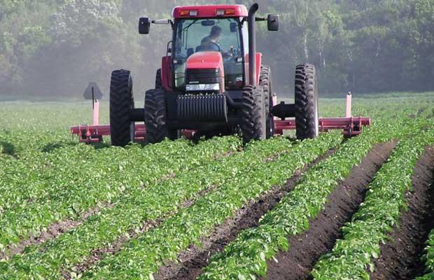 production_agricole.jpg