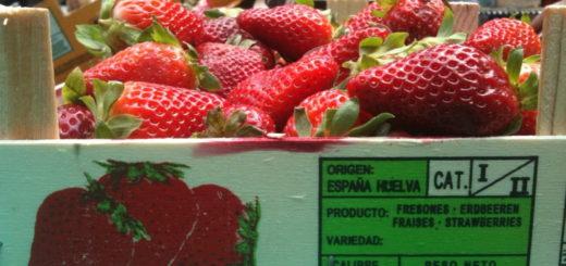 fraise_huelva.jpg