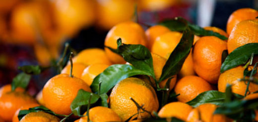 f3fb60c375e7ed Overview of the orange market in the world: A market study from ...