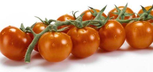 tomate-cherry-rama.jpg