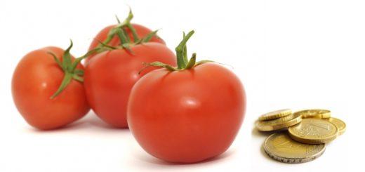 tomate_marocaine.jpg
