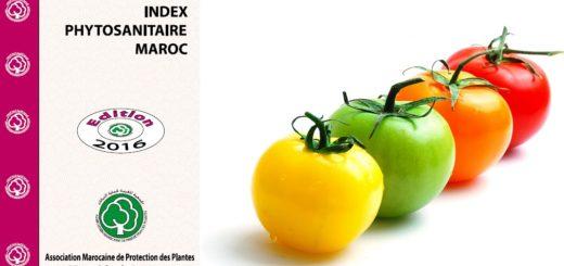 index_phyto_maroc.jpg