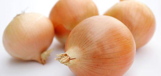 onions.jpg