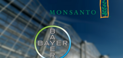 bayer_monsanto.png