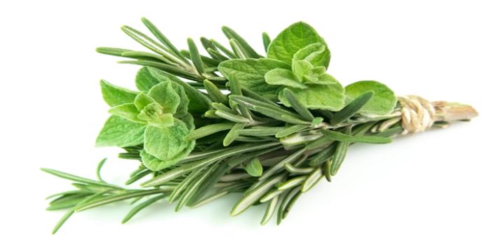 herbes.png