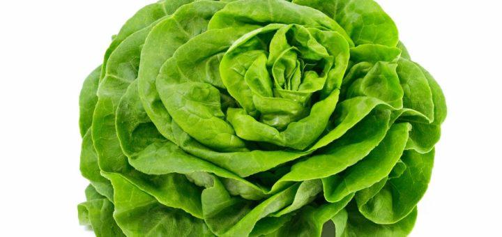 salade-.jpg