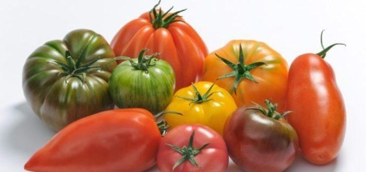 varietes_tomate.jpg