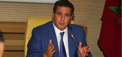 Aziz akhannouch, minstre agriculture