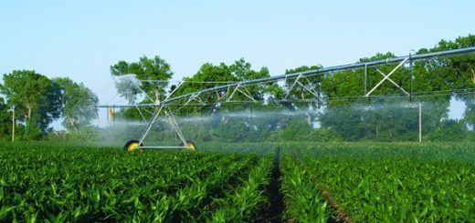 irrigation, centre pivot