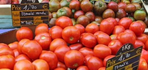 tomate.jpeg