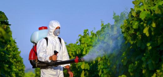 Pesticide, Traitement,