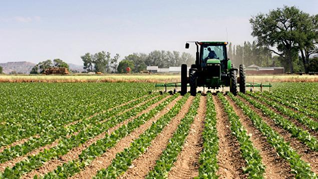 terres_agricoles.jpg
