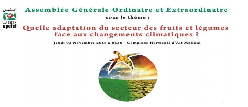 APEFEL, COP22, Assemblée, CHA, fruits et légumes, Changements climatiques