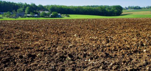Afrique, terre agricole, Fertilité