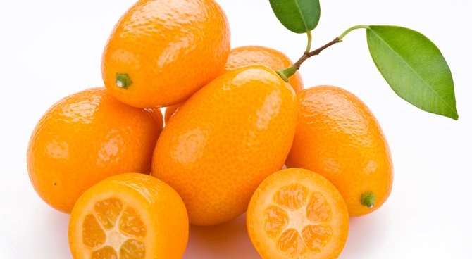 Agrume, Kumquat, Antioxydants, Vitamines, variété