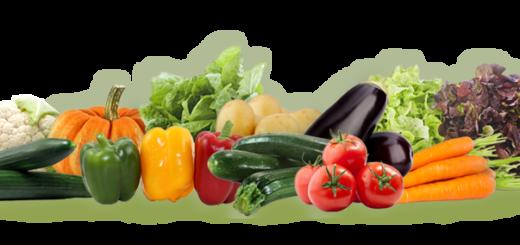 fruits légumes export