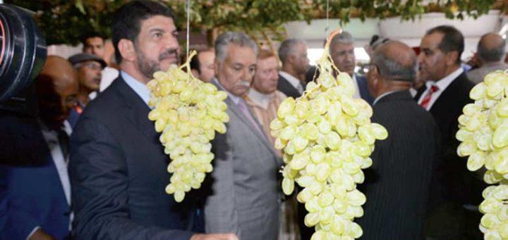 festival, raisin, Bouznika, Maroc